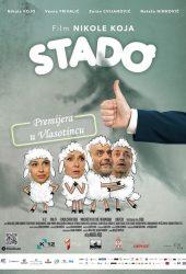 poster-stado-2016-bioskop